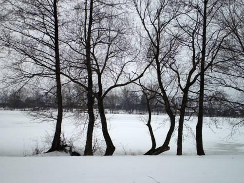Озеро Данилищево в зимний пасмурный день.